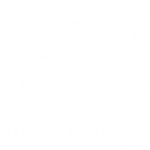 Palmiga Innovation Logo white - palmiga.com